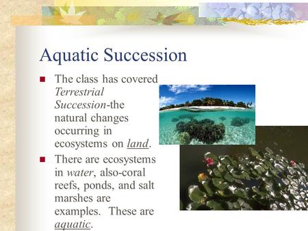 Aquatic Succession The class has covered Terrestrial Succession-the natural changes occurring in ecosystems on land. There are ecosystems in water, also-coral.
