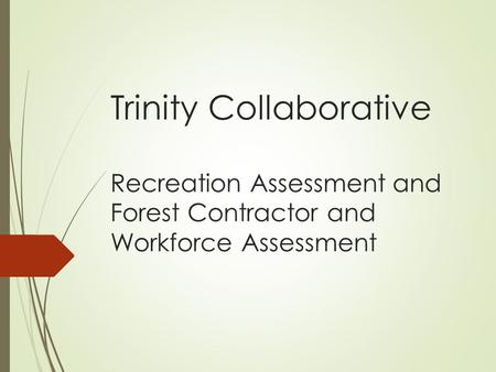 Trinity Collaborative Recreation Assessment and Forest Contractor and Workforce Assessment.