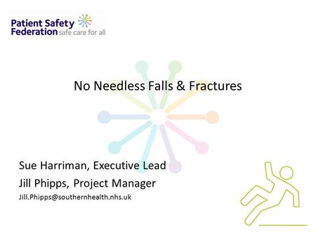 No Needless Falls & Fractures Sue Harriman, Executive Lead Jill Phipps, Project Manager