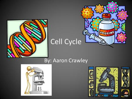Cell Cycle By: Aaron Crawley. Interphase \ Interphase-prep stage DNA replicates (exact copy). Prep-stage  ology/the-three-stages-of-