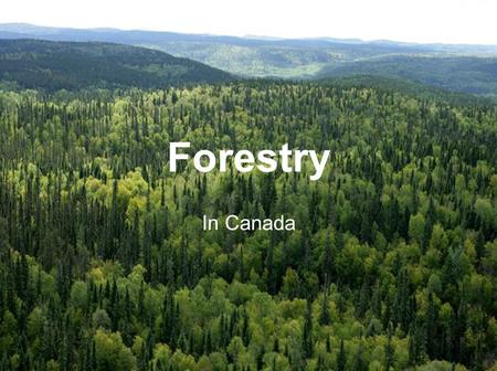 Forestry In Canada.