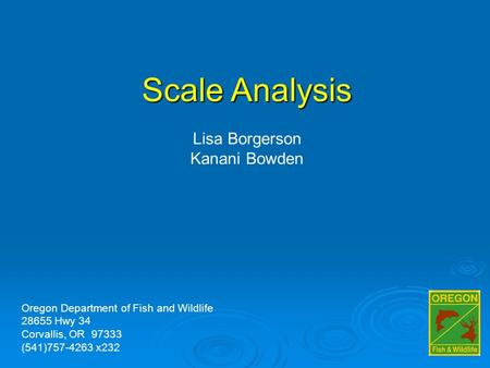 Scale Analysis Lisa Borgerson Kanani Bowden Oregon Department of Fish and Wildlife 28655 Hwy 34 Corvallis, OR 97333 (541)757-4263 x232.