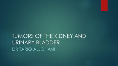 TUMORS OF THE KIDNEY AND URINARY BLADDER DR TARIQ ALJOHANI.