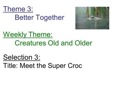 Theme 3: Better Together Weekly Theme: Creatures Old and Older Selection 3: Title: Meet the Super Croc.