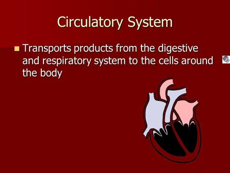 Circulatory System Transports products from the digestive and respiratory system to the cells around the body Transports products from the digestive and.