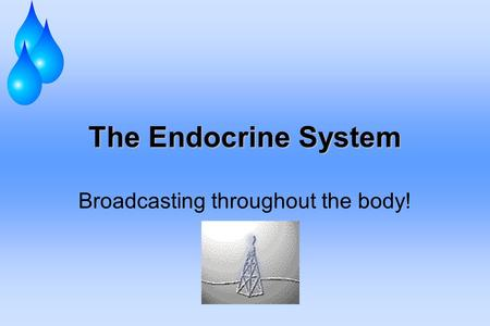 The Endocrine System Broadcasting throughout the body!