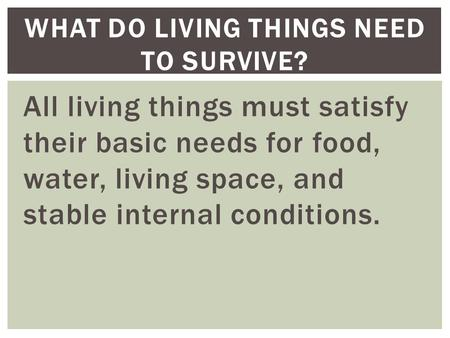 All living things must satisfy their basic needs for food, water, living space, and stable internal conditions. WHAT DO LIVING THINGS NEED TO SURVIVE?