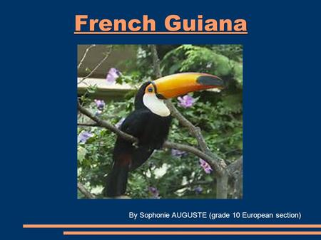 French Guiana By Sophonie AUGUSTE (grade 10 European section)
