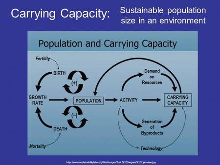 Carrying Capacity: Sustainable population size in an environment