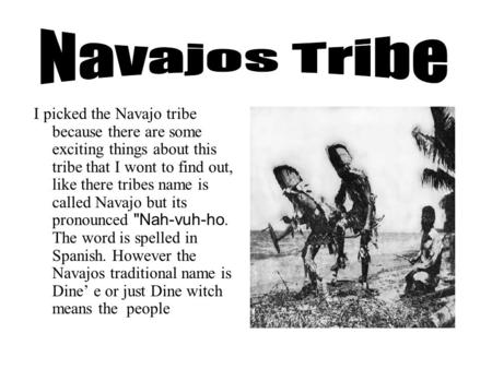 I picked the Navajo tribe because there are some exciting things about this tribe that I wont to find out, like there tribes name is called Navajo but.