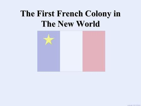 The First French Colony in The New World. The Profitable Fur Trade In the late 1500's the fur trade was very profitable for fishermen and merchants.In.