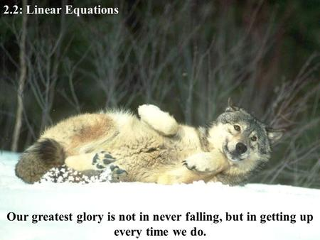 2.2: Linear Equations Our greatest glory is not in never falling, but in getting up every time we do.