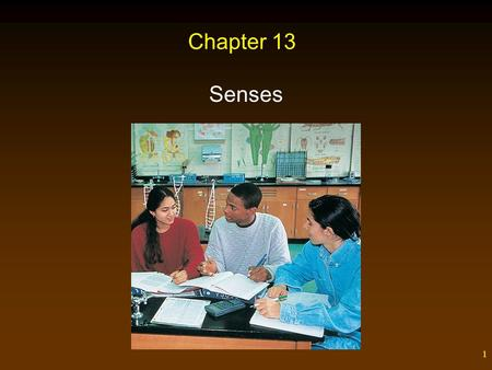 1 Chapter 13 Senses. 2 Outline Types of Sensory Receptors Sense of Taste Sense of Smell Sense of Vision – Focusing – Integration of Visual Signals – Abnormalities.
