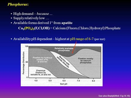 Phosphorus: High demand – because … Supply relatively low … Available forms derived 1° from apatite Ca 5 (PO 4 ) 3 (F,Cl,OH) = Calcium (Fluoro,Chloro,Hydroxyl)
