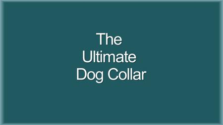 The Ultimate Dog Collar. Faculty Advisor Dr. Patrick Donohoe Daniel Stevenson (Electrical Engineering) Kaytan Mills (Electrical Engineering) Team Leader.