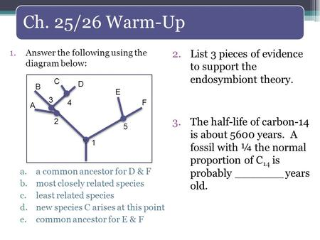 Ch. 25/26 Warm-Up 2.List 3 pieces of evidence to support the endosymbiont theory. 3.The half-life of carbon-14 is about 5600 years. A fossil with ¼ the.