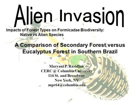 Impacts of Forest Types on Formicadae Biodiversity: Native vs Alien Species A Comparison of Secondary Forest versus Eucalyptus Forest in Southern Brazil.