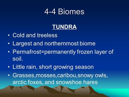 4-4 Biomes TUNDRA Cold and treeless Largest and northernmost biome Permafrost=permanently frozen layer of soil. Little rain, short growing season Grasses,mosses,caribou,snowy.