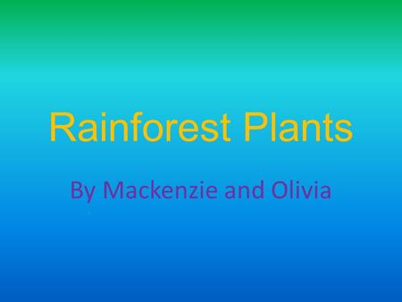 Rainforest Plants By Mackenzie and Olivia. Types of Plants Bengal Bamboo Coconut Tree Jambu Kapok Tree Strangler Figs Passion Flower Just for reference.