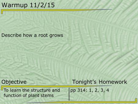 Warmup 11/2/15 Describe how a root grows Objective Tonight's Homework To learn the structure and function of plant stems pp 314: 1, 2, 3, 4.