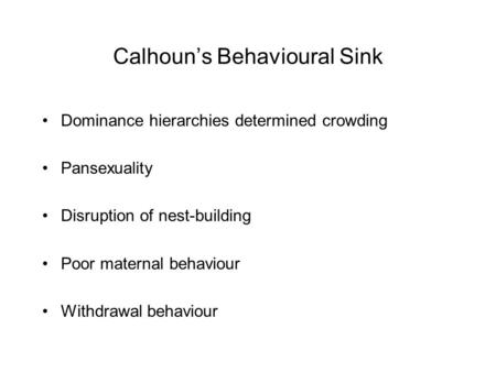 Calhoun's Behavioural Sink Dominance hierarchies determined crowding Pansexuality Disruption of nest-building Poor maternal behaviour Withdrawal behaviour.