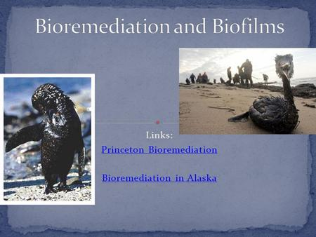Links: Princeton Bioremediation Bioremediation in Alaska.