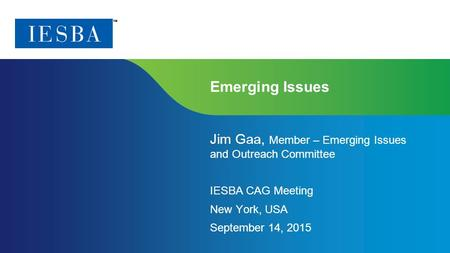 Page 1 | Confidential and Proprietary Information Emerging Issues Jim Gaa, Member – Emerging Issues and Outreach Committee IESBA CAG Meeting New York,