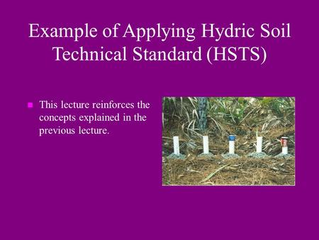 Example of Applying Hydric Soil Technical Standard (HSTS) n This lecture reinforces the concepts explained in the previous lecture.