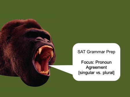 chomp! SAT Grammar Prep Focus: Pronoun Agreement [singular vs. plural] SAT Grammar Prep Focus: Pronoun Agreement [singular vs. plural]
