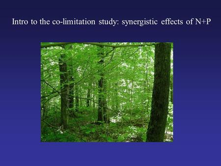 Intro to the co-limitation study: synergistic effects of N+P.