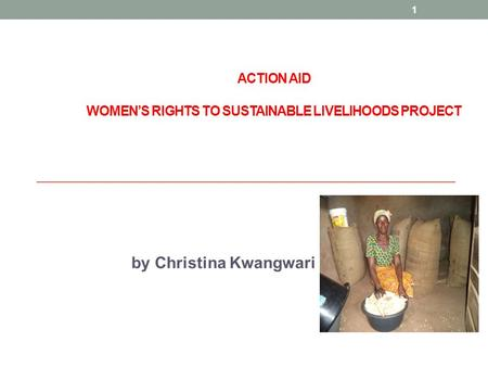 ACTION AID WOMEN'S RIGHTS TO SUSTAINABLE LIVELIHOODS PROJECT by Christina Kwangwari 1.