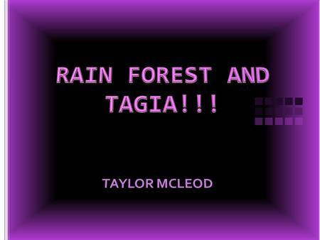 There are two different kinds of rain forest, tropical and temperate. There are 4 layers in a rain forest. First there's the emergent layer. The trees.