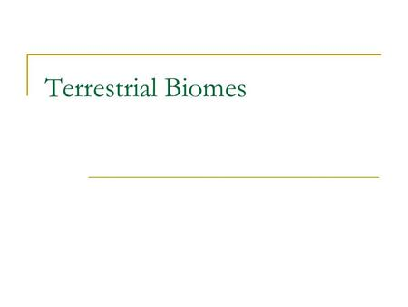 Terrestrial Biomes. What is a Biome? Biomes – large regions characterized by a specific type of climate and certain types of plant and animal communities.