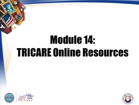 Module 14: TRICARE Online Resources. 2 Module Objectives After this module, you should be able to: Assist beneficiaries who use the Internet and TRICARE.