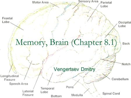 Memory, Brain (Chapter 8.1) Vengertsev Dmitry. Agenda Goals: 1) provide general overview of what we do know about underlying biological processes and.