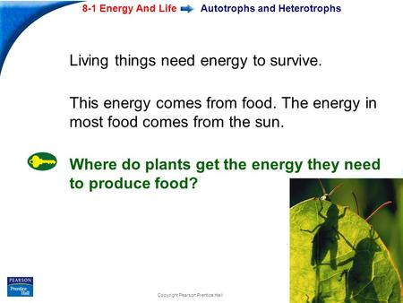 End Show 8-1 Energy And Life Slide 1 of 20 Copyright Pearson Prentice Hall Autotrophs and Heterotrophs Living things need energy to survive. This energy.