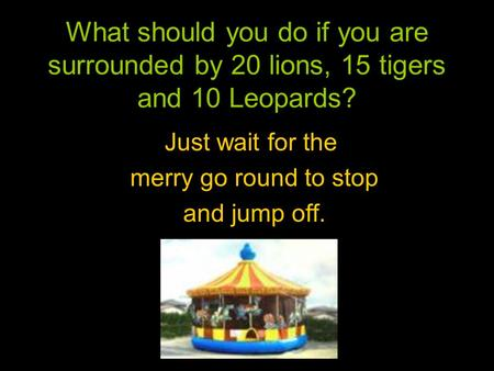 What should you do if you are surrounded by 20 lions, 15 tigers and 10 Leopards? Just wait for the merry go round to stop and jump off.