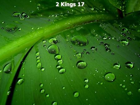 2 Kings 17. 2 Kings 17:1 In the twelfth year of Ahaz king of Judah, Hoshea the son of Elah became king of Israel in Samaria, and he reigned nine years.