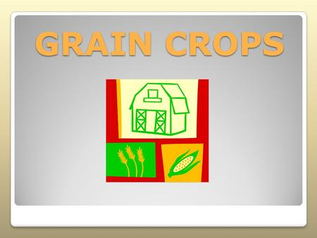 GRAIN CROPS. Interest Approach Have the students answer the following questions with a true or false response. After completing the lesson, check your.