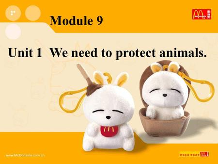 Module 9 Unit 1 We need to protect animals.. 南极大冒险.