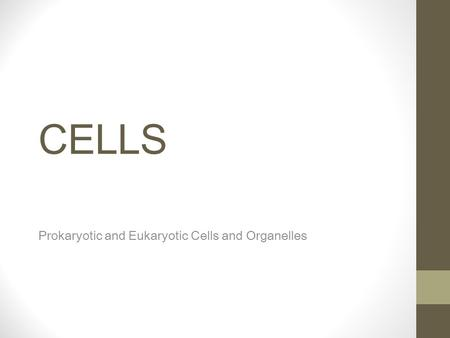CELLS Prokaryotic and Eukaryotic Cells and Organelles.