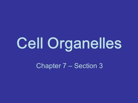 Cell Organelles Chapter 7 – Section 3. Review What did we say were the TWO MAIN types of cells? What do they have in common? What was the BIGGEST Difference?