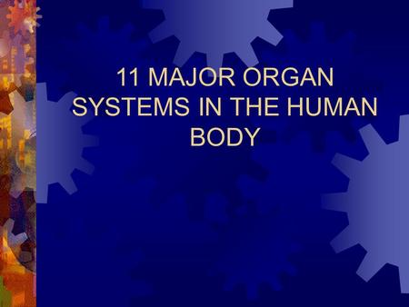 11 MAJOR ORGAN SYSTEMS IN THE HUMAN BODY. 1) Circulatory System Major Structures: Heart, Blood vessels, Blood, lymph nodes and vessels, lymph Functions: