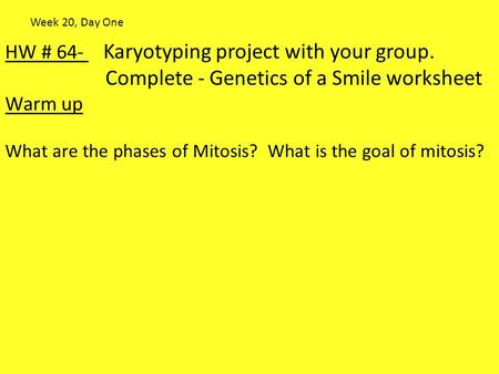 Complete - Genetics of a Smile worksheet