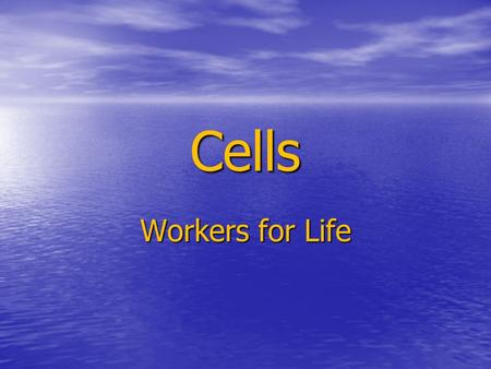 Cells Workers for Life. Human Cell Cell Membrane 1. Controls what goes in and 1. Controls what goes in and out of a cell out of a cell 2. Cell Homeostasis.