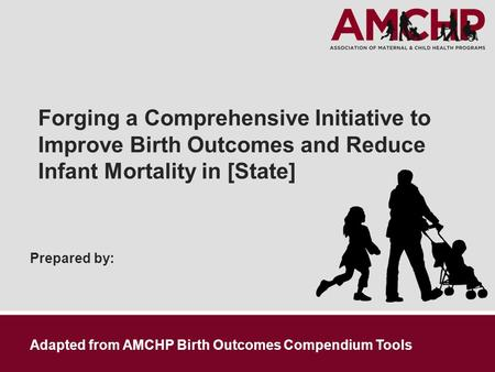 Prepared by: Forging a Comprehensive Initiative to Improve Birth Outcomes and Reduce Infant Mortality in [State] Adapted from AMCHP Birth Outcomes Compendium.