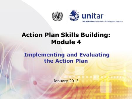 January 2013 Action Plan Skills Building: Module 4 Implementing and Evaluating the Action Plan.