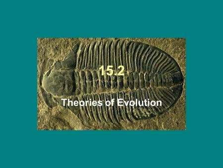 15.2 Theories of Evolution. Evolution Organisms change over time…