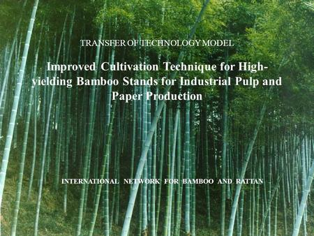 TRANSFER OF TECHNOLOGY MODEL Improved Cultivation Technique for High- yielding Bamboo Stands for Industrial Pulp and Paper Production INTERNATIONAL NETWORK.