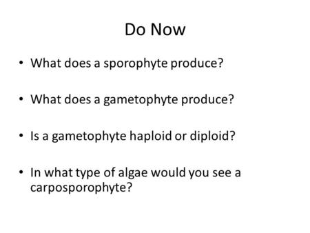 Do Now What does a sporophyte produce? What does a gametophyte produce? Is a gametophyte haploid or diploid? In what type of algae would you see a carposporophyte?